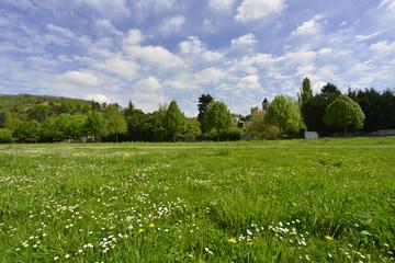 Nature verdoyante à Vétheuil, Val d'Oise