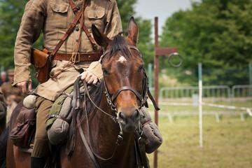 Ułan na koniu