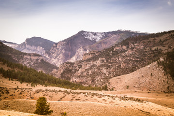 Bighorn Mountains Dayton Wyoming