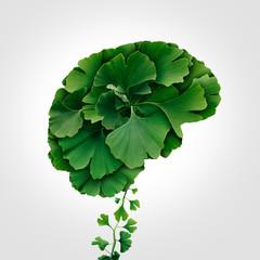 Ginkgo Biloba Brain