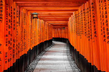 Gate to heaven, Kyoto, Japan
