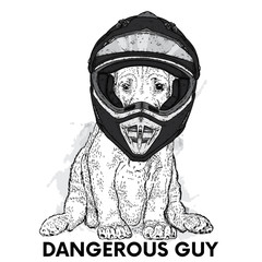 Funny dog in a motorcycle helmet. Vector illustration for a postcard, poster or print for clothes. Purebred puppy. Motorcycling. Sport.