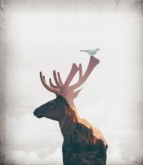 Digital artwork double exposure of elk and mountain