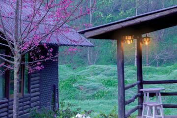 Facade of countryside wooden log house