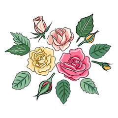 vector illustration of beautiful roses with leaves
