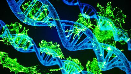 DNA und Krebszellen - DNA and cancer cells