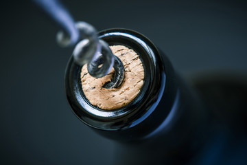 wine cork in bottle and corkscrew and blurry background, photographed from above for winemaker business card or book cover