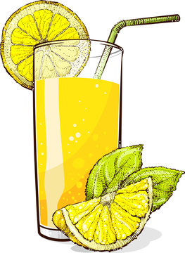 A glass of lemonade with pieces of lemon. Vector drawing.