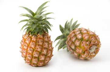 西表島のパイナップル