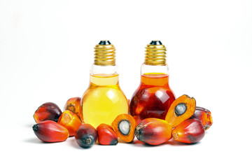 Oil Palm Fruit bulb bottle