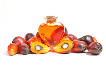 Oil Palm Fruit bulb bottle