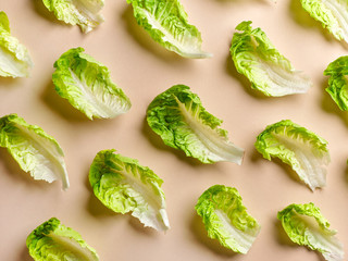 pattern of lettuce leaves