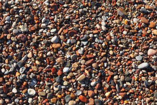 Colorful, wet pebbles