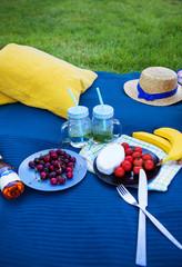 Bright summer picnic on nature-summer, sun, happiness