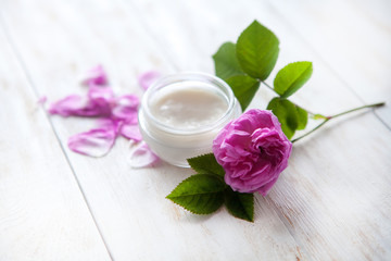 organic cosmetic with rose and pot of moisturizing face cream on white background