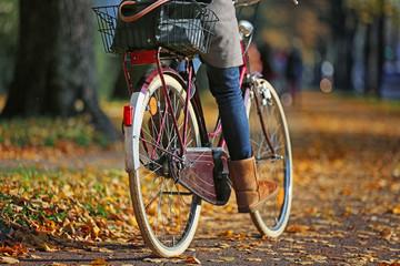 Hollandrad im Herbst