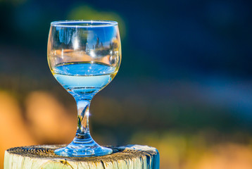 close up of half full wine glass sitting on a tree stump with reflectioons