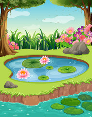 Little pond by the river in the forest