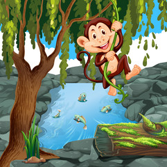 Monkey climbing vine in forest