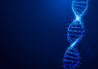 Wireframe DNA molecules structure mesh from a starry on blue background. Science and Technology concept Wall mural
