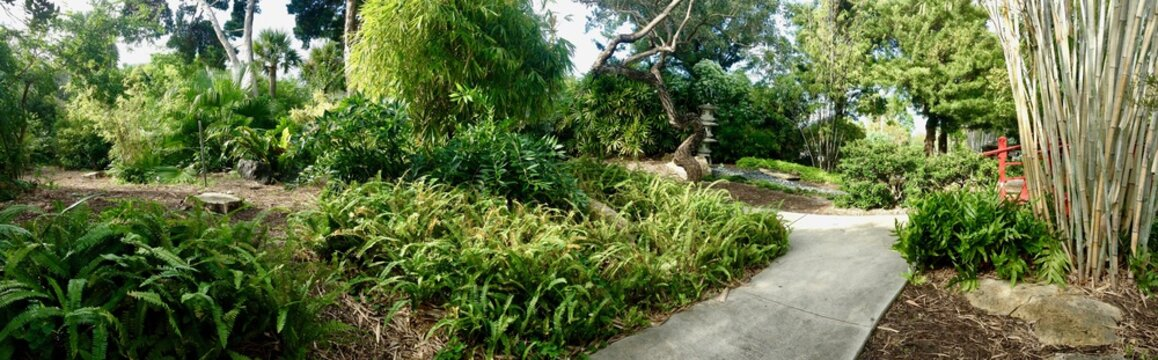 Panoramic view of a pebble path in Florida (United States of America) with a beautiful Japanese garden including giant bamboo and lush asian greenery