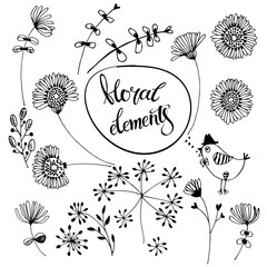 Hand-drawn floral elements. Isolated vector objects on white background.