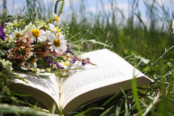 Open book  and bouquet of wild flowers laying on a green grass