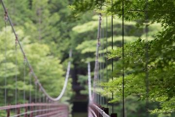 Green on bridge