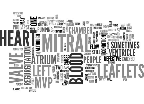 WHAT IS MITRAL VALVE PROLAPSE TEXT WORD CLOUD CONCEPT