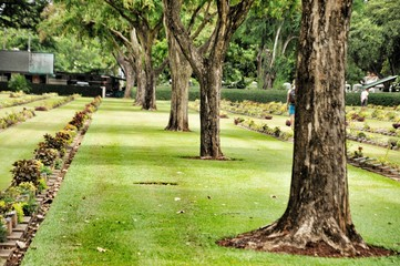 big trees and lawn in a cemetery with headstones in the background at Kanchanaburi War Cemetery in Thailand.