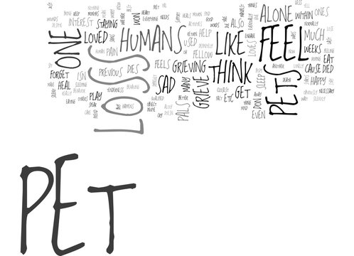 WHEN PETS LOSE THEIR PET PALS DO THEY GRIEVE TOO TEXT WORD CLOUD CONCEPT
