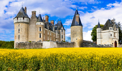Great castles of Loire valley - Montpoupon. France