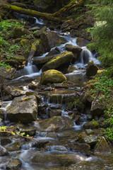 Fast mountain river , spring in Carpathians, Ukraine