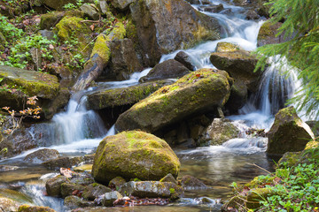 Fast mountain river , spring in Carpathians, Ukraine