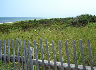 Beach, Dunes and Fence on Cape Cod National Seashore, Cape Cod, Massachusetts, New England