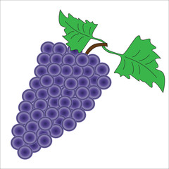 A bunch of grapes on a white background.