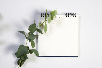 notebook on the springs with a white rose on a white background with an empty space for notes.