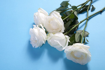 five white roses on a blue background with an empty space for notes. Romantic card