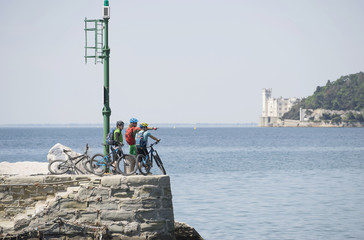 Mountain bikers pointing at view while standing by sea
