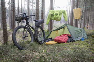 Mountain bike parked by tree trunks with tent and clothesline by it in forest
