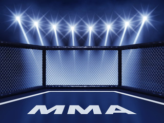 MMA cage lit by spotlights , Mixed martial arts fight night event