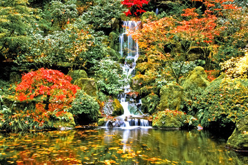 Waterfall, Japanese Garden