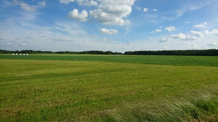 Sky and meadow in Lithuania in summer