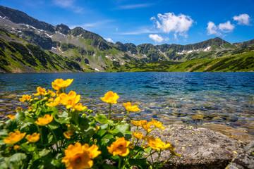 Obraz Tatra mountains landscape, Europe, Poland - fototapety do salonu