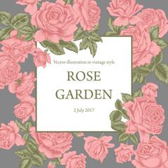 Розы. Векторная иллюстрация в стиле винтаж. Рамка с цветами. Ботаника. Растительный узор. Классическая праздничная открытка.