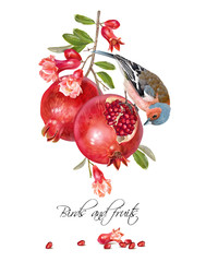 Finch pomegranate card