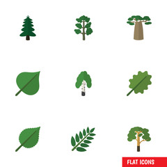 Flat Icon Ecology Set Of Wood, Hickory, Park And Other Vector Objects. Also Includes Acacia, Spruce, Park Elements.