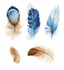 Hand drawn watercolor vibrant feather set. Boho style. illustration isolated on white. Design for T-shirt, invitation, wedding card.