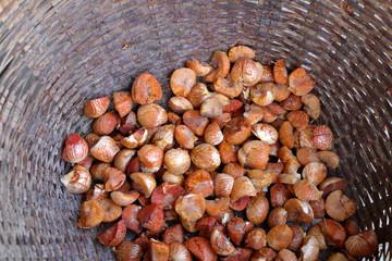 betel nut or areca nut in basket for sale at market, Thailand.