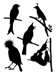 Detail birds silhouette. Good use for symbol, logo, web icon, mascot, sign, or any design you want.